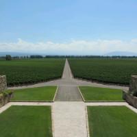 Catena Zapata Mendoza Argentina vineyards