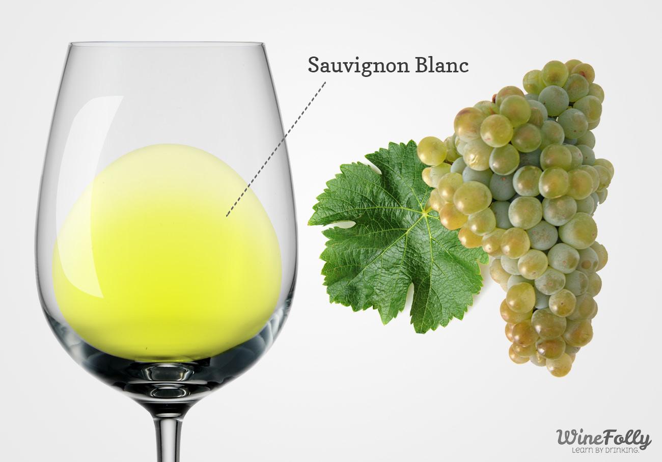 Sauvignon Blanc Wine and Grapes