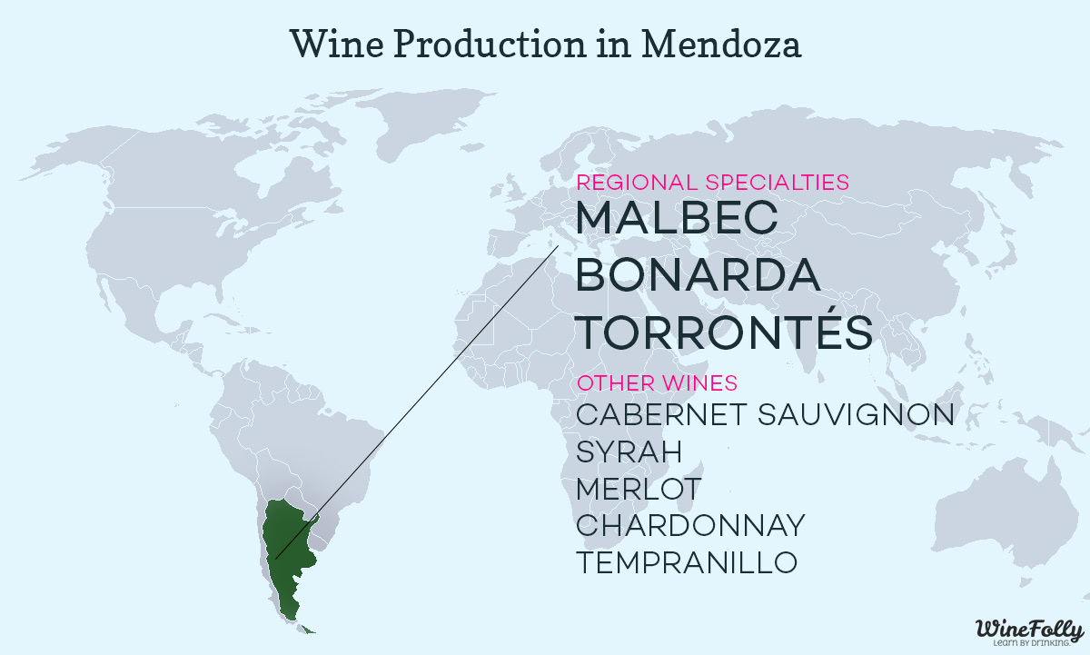 wine-production-argentina-guide