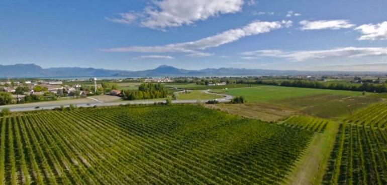 Lugana Region Lake Garda Turbiana Vineyards
