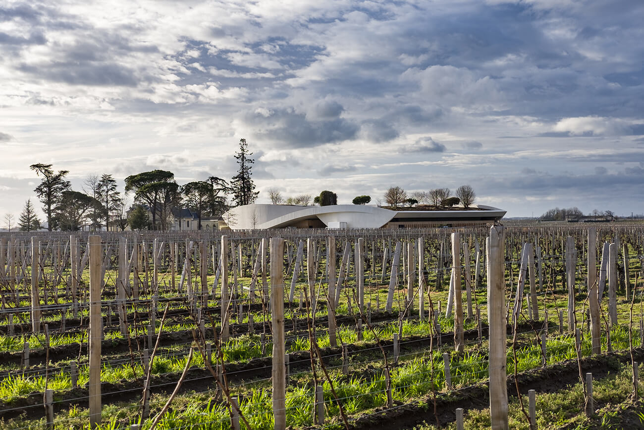 bordeaux-vineyards-luca-sartoni-2017