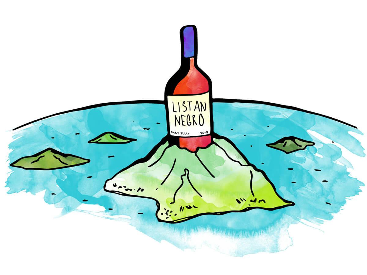 listan-negro-red-wine-bottle-illustration-winefolly
