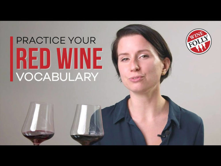 red-wine-vocabulary-madeline-puckette