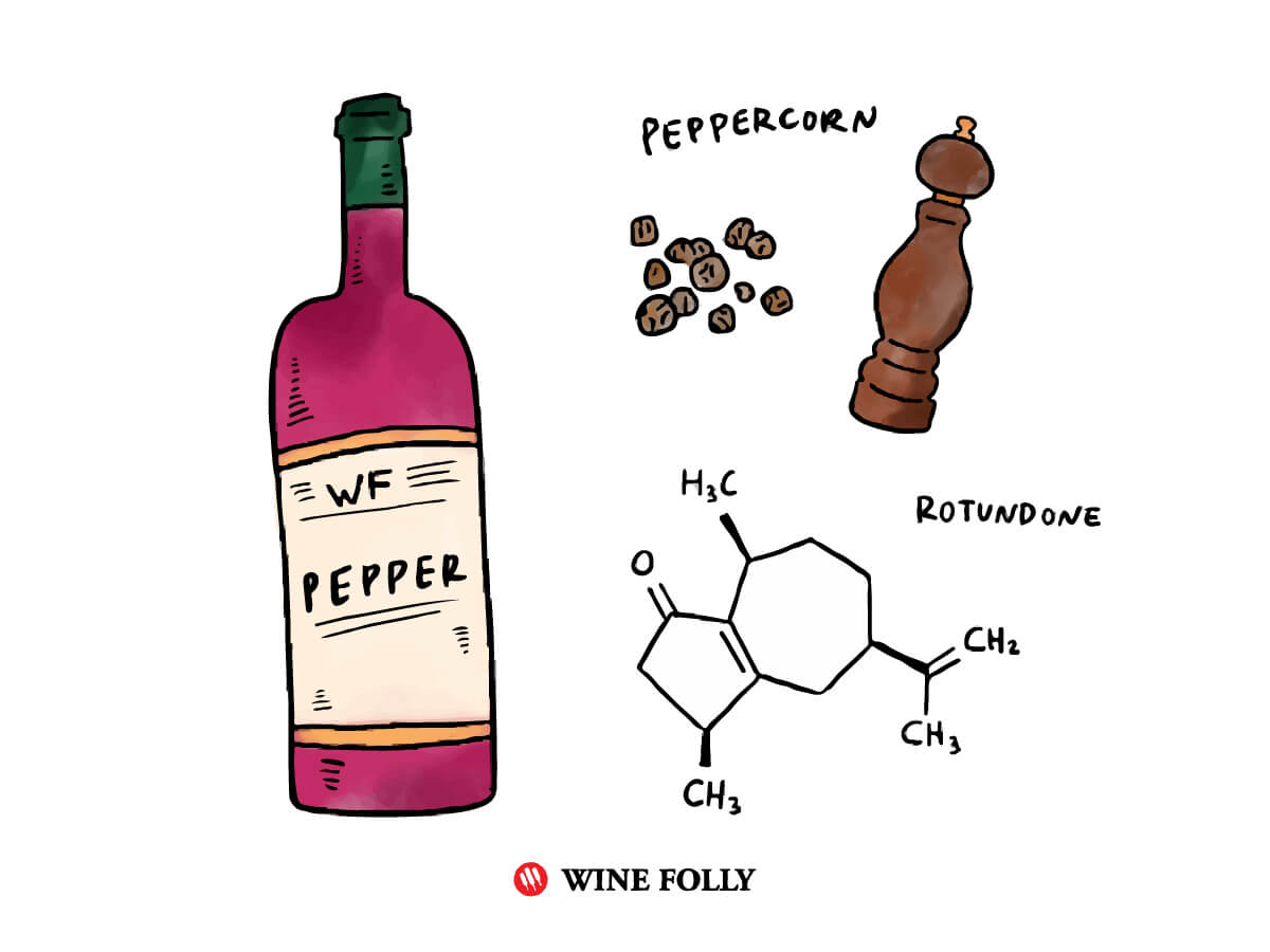 Spicy Red Wine Rotundone diagram