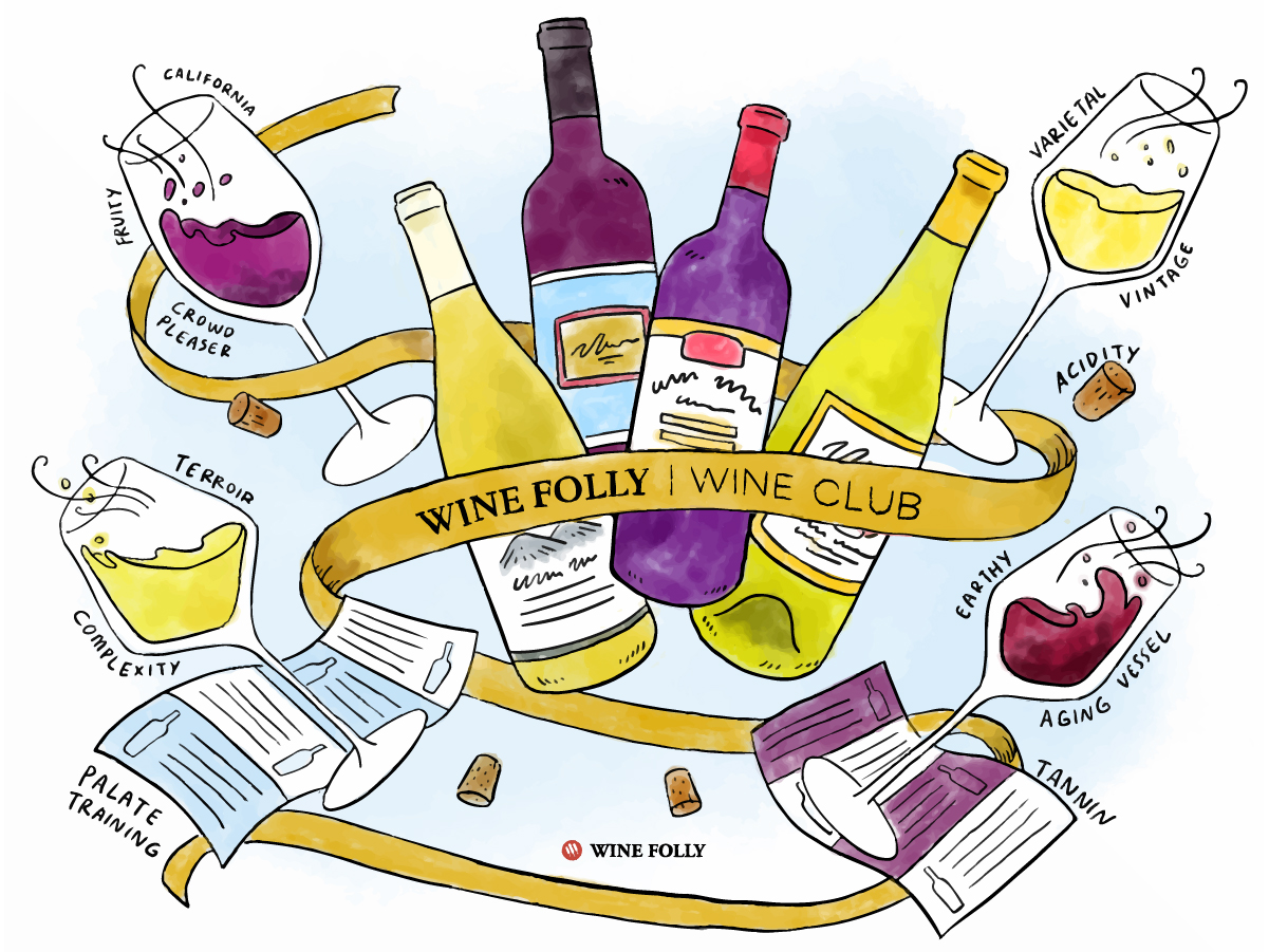 Wine Folly Wine Club - 4 wines every 2 months