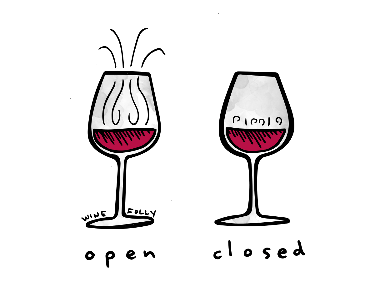 wine glass illustration open and closed