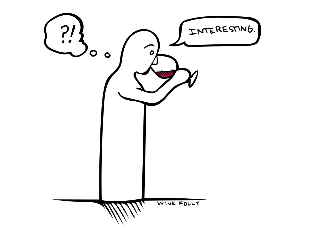 wine-interesting-illustration